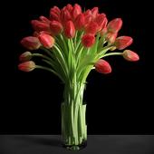 Красные тюльпаны/Red tulips