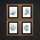 The picture in the frame: 10 piece (Collection 9)