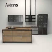 Aster - factory