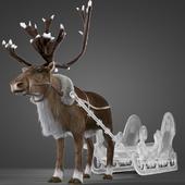 North Deer