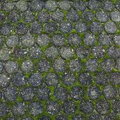 Street Stone grass
