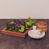 Summer Set 3 types of basil