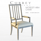 Currey & Company / Moseley Arm Chair