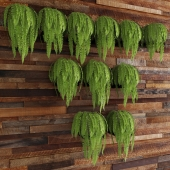 Fern and art wall from boards