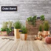 Crate & Barrel planter set