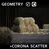 тюк соломы (GEOMETRY+SCATTER)