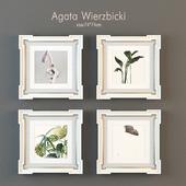 Agata Wierzbicki set
