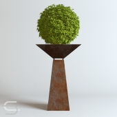 Plant CEDE 02