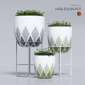 harlequin_pot