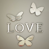 Mirrored Wall Letters (love, dream, wish)+Butterfly Mirrors