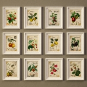 Botanique pictures -2