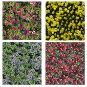 Бесшовные текстуры цветов и декоративной травы