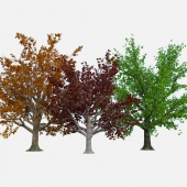 Simple three tree