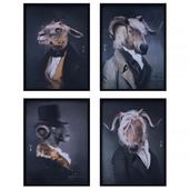 IBride Collector Portraits set 001