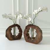 Orchid in decorative vase