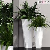 epoxia diamond