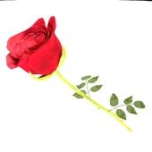 Роза_красная