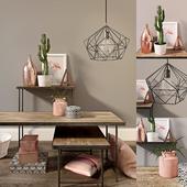 Decor set with cactus