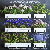 Kitchen garden 5