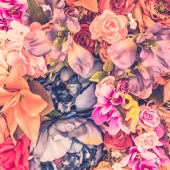 wallpaper flower