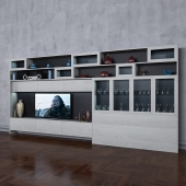 Storage system with books tv vase 9