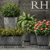 Restoration Hardware pedestal sheet metal planters