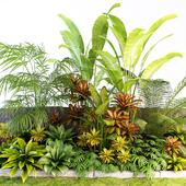 Palm composition