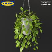 Ikea_skurar_hanging_planter_01