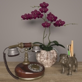 Decorative set_01