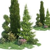 Набор для озеленения 4