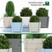 Hardwood planters 2