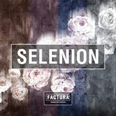FACTURA Selenion