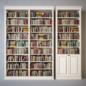 Cabinets with classical books