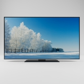 TV for presentations 2600х1450