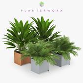 Planterworx TRUE SQUARE Tropical