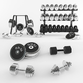 A set of sports dumbbells and pancakes on the racks.