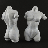 Classic woman torso