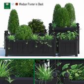 Windsor planter