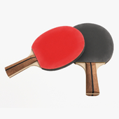 Table Tennis paddle