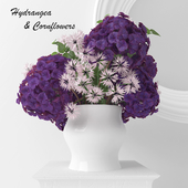 Hydrangea Purpurea and Cornflowers