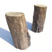 Acacia Stump