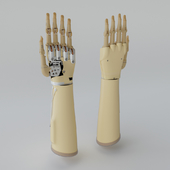 Myoectric hand prosthesis