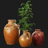 Pottery Barn Sicily Terra Cotta Vases
