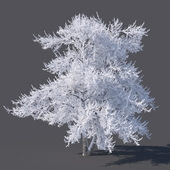 Зимнее дерево (6 метров)