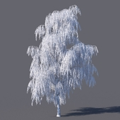Зимняя берёза (15 метров)