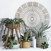 Plant decor set - 1