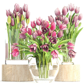 Collection of flowers 2. Tulips.