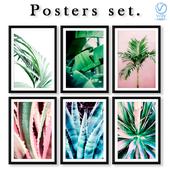 Серия постеров с листьями пальм и кактусов.