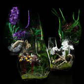 Terrarium vases with Orchids