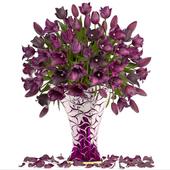 Коллекция цветов 21. Тюльпаны.